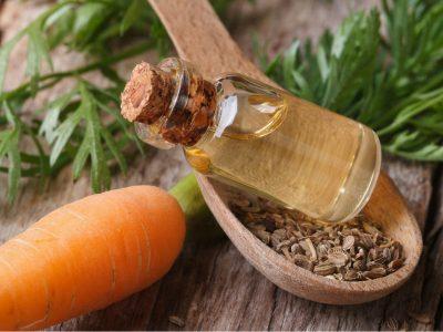 Huile essentielle de carotte : propriétés et bienfaits