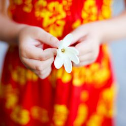 Monoï : propriétés cosmétiques de cette huile tahitienne