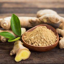 Le gingembre : ses nombreuses vertus pour la santé !