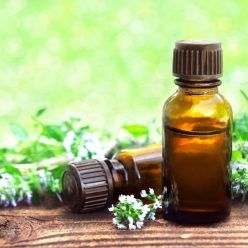 Huile essentielle de Thym à Linalol : tonique et anti-infectieuse