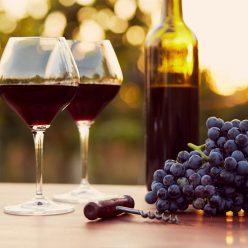 Pourquoi faut-il privilégier les vins bio ?