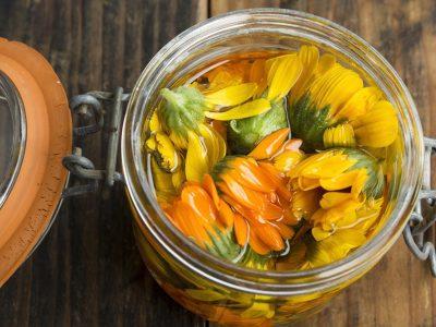 L'huile végétale de calendula, un macérât incomparable pour apaiser la peau