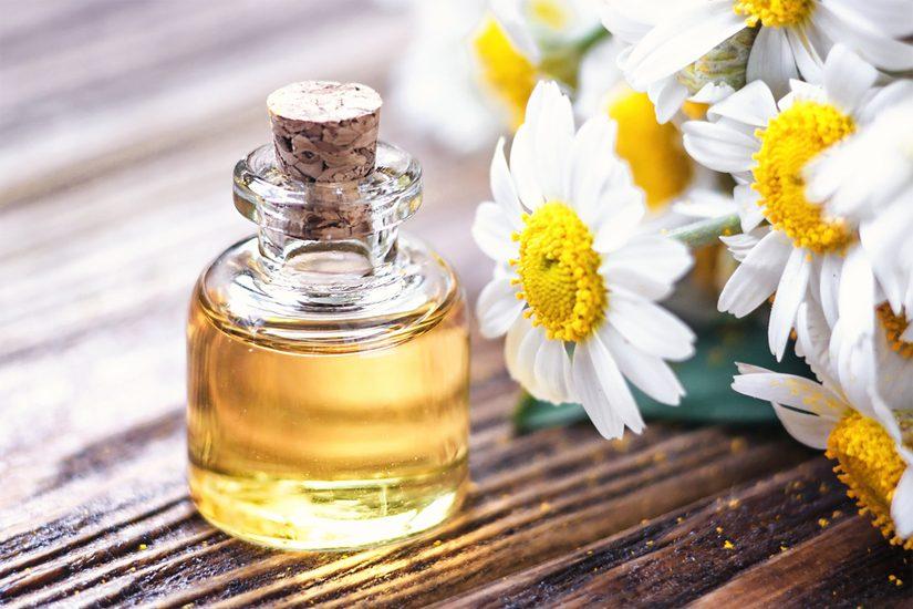Aceite esencial de manzanilla romana: propiedades y ...
