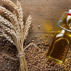 L' huile de germe de blé : une source naturelle d'antioxydants