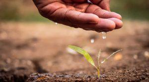 Consommation d'eau dans l'industrie, l'agriculture, l'élevage