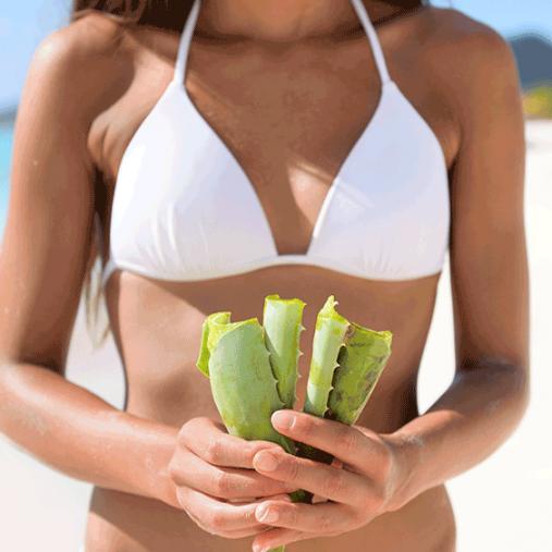 Gel d'aloe Vera : 4 façons de l'utiliser cet été !