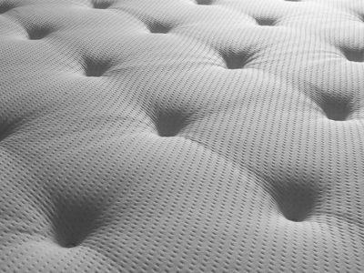 Punaises de lit : comment s'en débarrasser avec des produits naturels ?