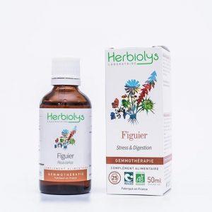 Bourgeons de Figuier BIO Herbiolys