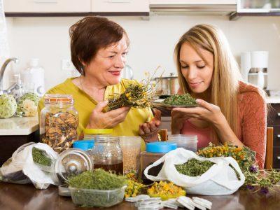 Top 10 des plantes médicinales à connaître
